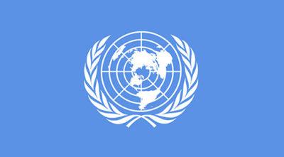 Международный круглый стол «Роль людей с инвалидностью в реализации Конвенции ООН о правах инвалидов в РФ и странах СНГ»